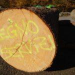 legno-servizi